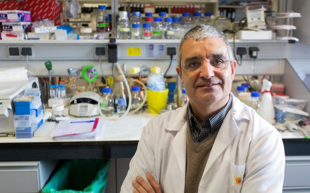 """Xosé R. Bustelo: """"Necesitamos un apoyo más decidido para seguir siendo referencia internacional en investigación"""""""