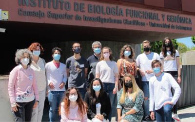 En busca de nuevos antibióticos contra las bacterias resistentes